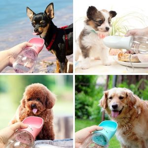 Water Filtering Dog Bottle